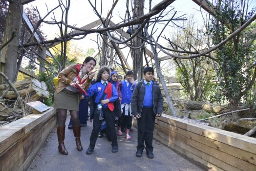 Science Pupils being taken around London Zoo hoping to catch a glimpse of one of its residents ©ZSL